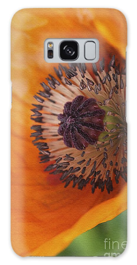 Flower Galaxy S8 Case featuring the photograph Orange Poppy With Texture by Deborah Benoit