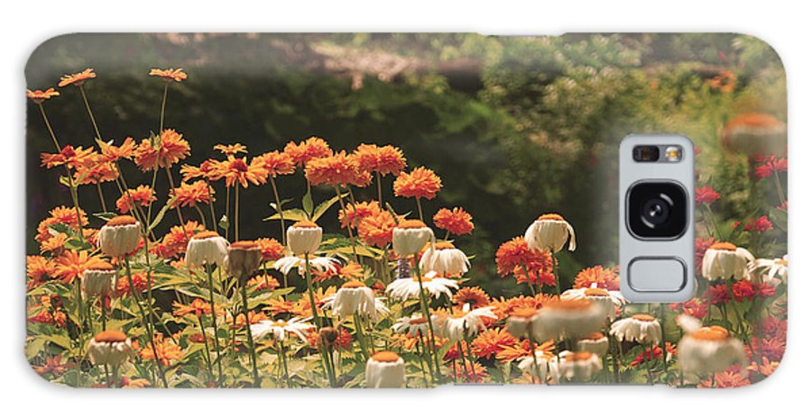 Flowers Galaxy S8 Case featuring the photograph Orangeade by Aimelle