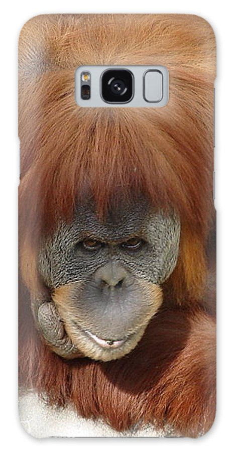 Red Ape Eyes Galaxy S8 Case featuring the photograph Orangutan by Luciana Seymour