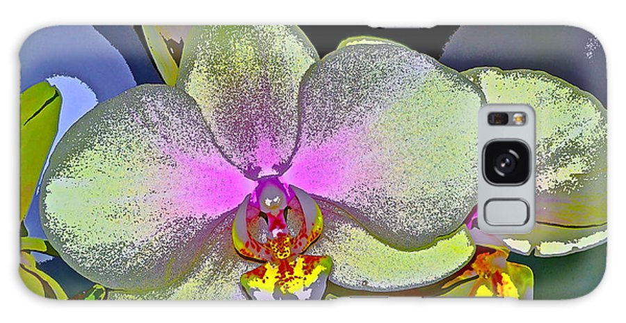 Floral Galaxy S8 Case featuring the photograph Orchid 2 by Pamela Cooper