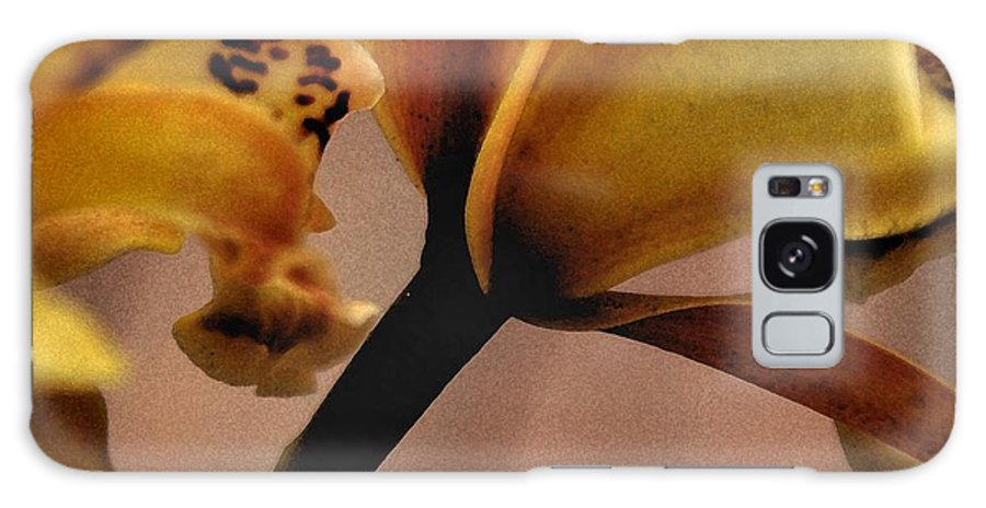 Orchid Galaxy S8 Case featuring the photograph Orchid Yellow by Michael Ziegler