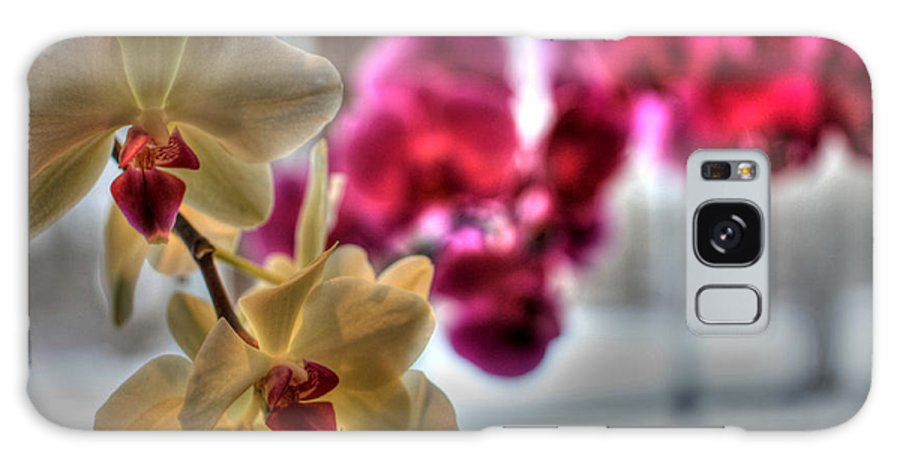 Orchids Galaxy S8 Case featuring the photograph Orchids by David Bearden