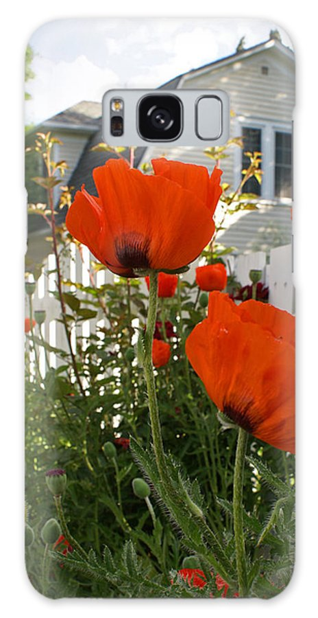 Poppies Galaxy S8 Case featuring the photograph Oriental Poppies by Heather Coen