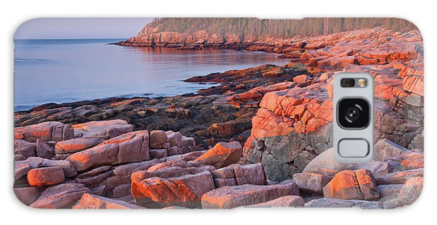 Acadia National Park Galaxy S8 Case featuring the photograph Otter Cliffs by Susan Cole Kelly