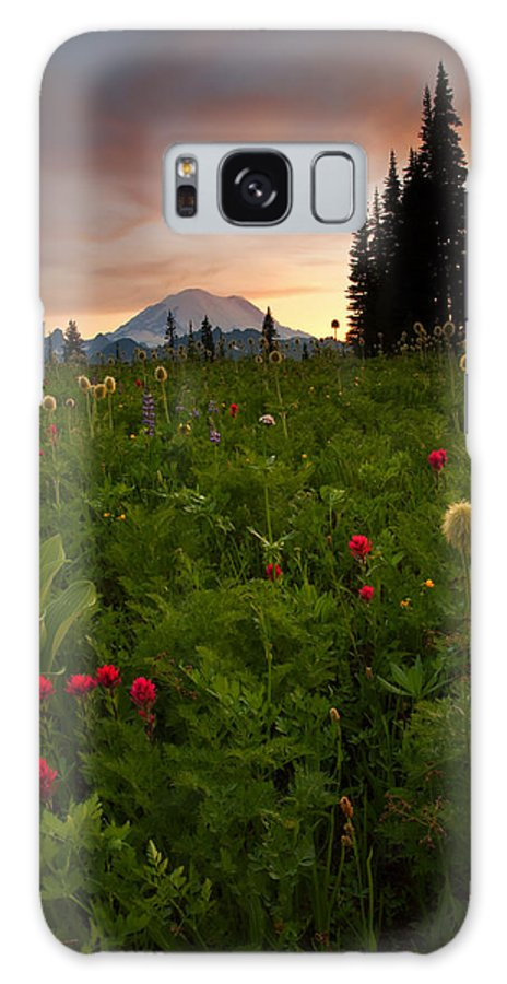 Sunset Galaxy S8 Case featuring the photograph Paintbrush Sunset by Mike Dawson