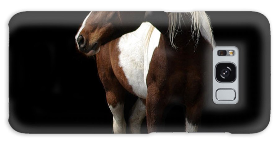 Horse Galaxy S8 Case featuring the photograph Painted Beauty by Linda Mishler