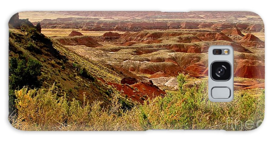 Painted Desert Vista Galaxy S8 Case featuring the photograph Painted Desert Panorama by Marilyn Smith