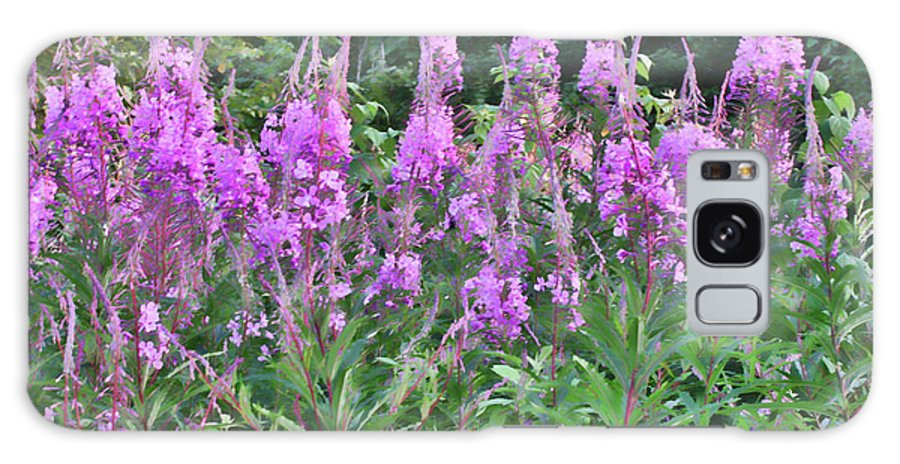 Fireweed Galaxy S8 Case featuring the photograph Painted Fireweed by Shari Jardina