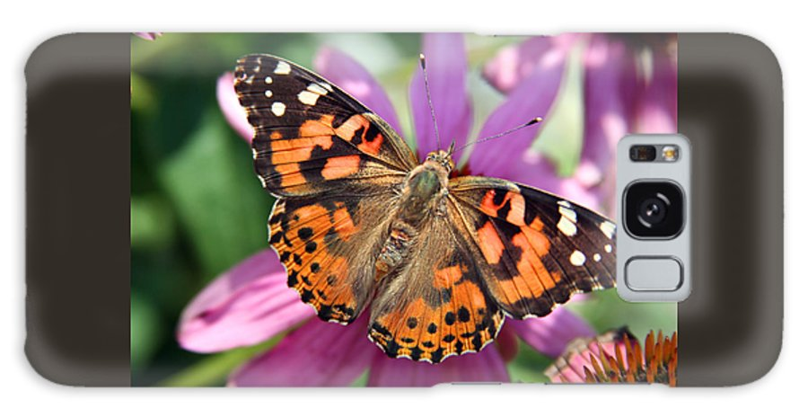 Painted Lady Galaxy Case featuring the photograph Painted Lady Butterfly by Margie Wildblood