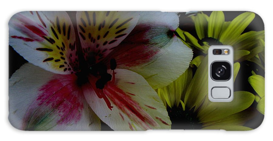Art For The Wall...patzer Photography Galaxy S8 Case featuring the photograph Painted Lily by Greg Patzer