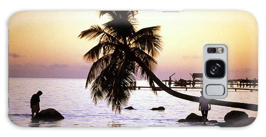 Sunset Galaxy S8 Case featuring the photograph Palm At The Moorings by Carl Purcell