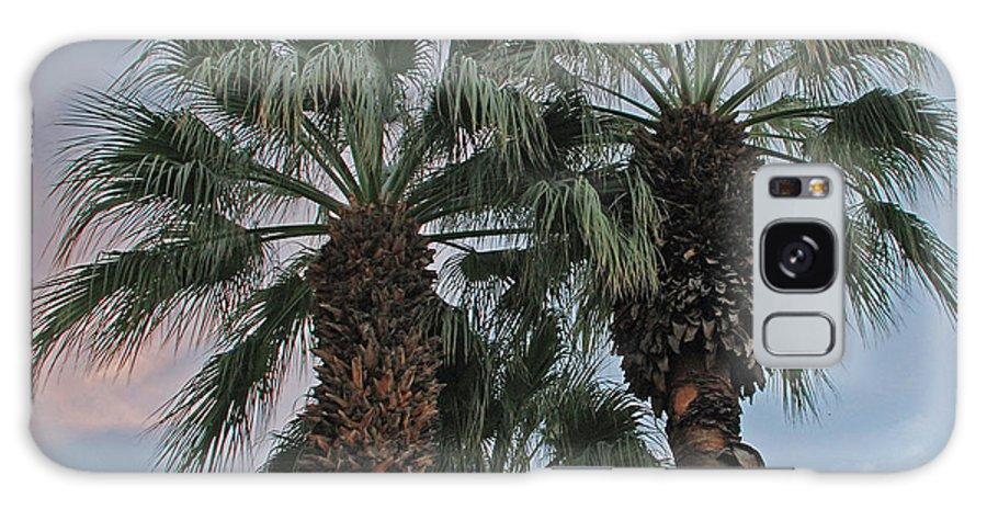 Galaxy S8 Case featuring the photograph Palm Desert Palms by Carol Eliassen