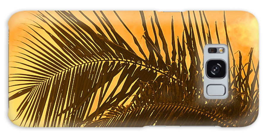 Palm Galaxy S8 Case featuring the photograph Palm Frond Sunset by Ian MacDonald