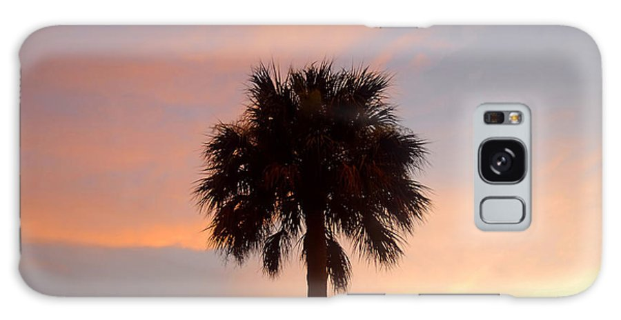Palm Tree Galaxy S8 Case featuring the photograph Palm Sky by David Lee Thompson