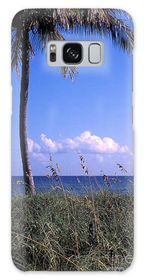 Florida Galaxy S8 Case featuring the photograph Palm Tree And Sea Grass On The Water Under Blue Sky by William Kuta