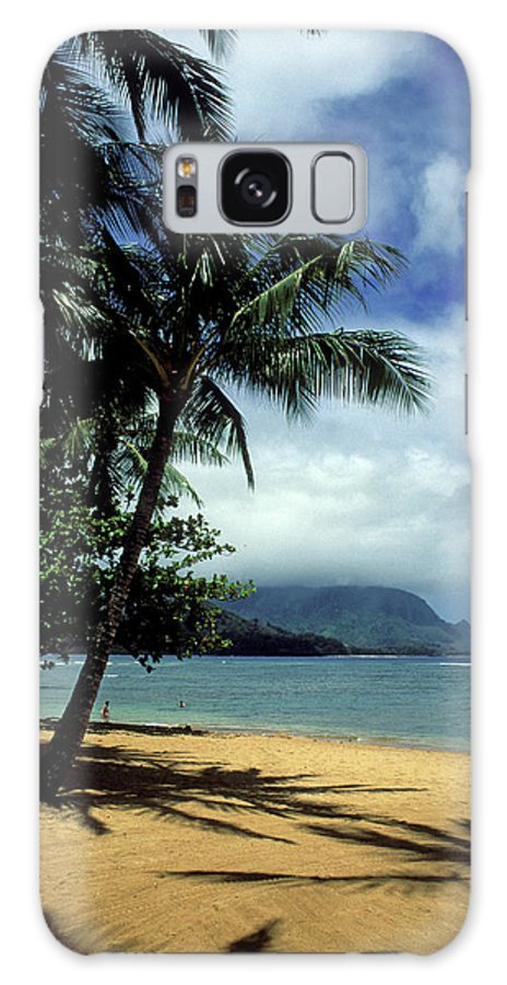 Kauai Photos Galaxy S8 Case featuring the photograph Palm Tree Shadows by Kathy Yates