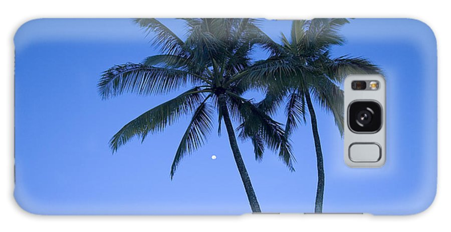 Afternoon Galaxy S8 Case featuring the photograph Palms And Blue Sky by Ron Dahlquist - Printscapes