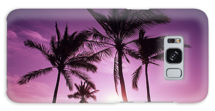 Adult Galaxy S8 Case featuring the photograph Palms And Pink Sunset by Carl Shaneff - Printscapes