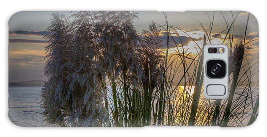 Beach Galaxy S8 Case featuring the photograph Pampas Grass Sunset by Paul Kukuk
