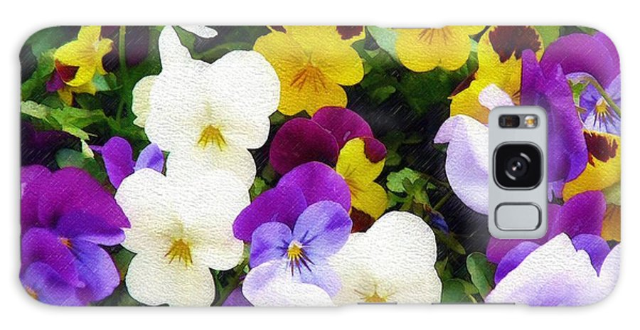 Pansies Galaxy Case featuring the photograph Pansies by Sandy MacGowan