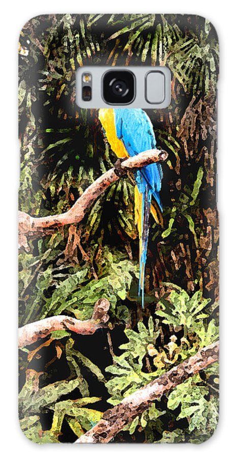 Parrot Galaxy S8 Case featuring the photograph Parrot by Steve Karol