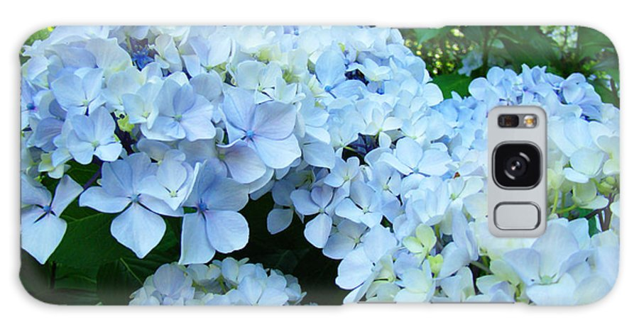 Nature Galaxy S8 Case featuring the photograph Pastel Blue Hydrangea Flowers Green Garden Floral by Baslee Troutman