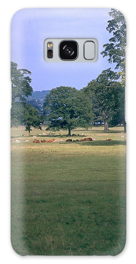 Great Britain Galaxy S8 Case featuring the photograph Pasture by Flavia Westerwelle