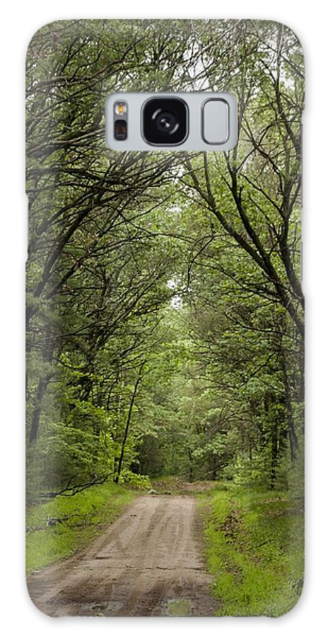 Landscape Galaxy S8 Case featuring the photograph Pathway To Heaven by Carey Strupp