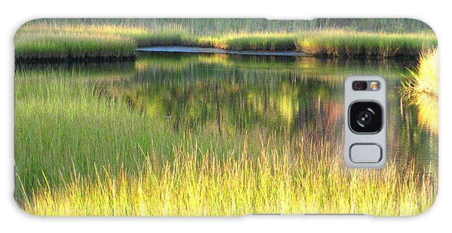 Water Galaxy S8 Case featuring the photograph Peaceful Marsh by Sybil Staples