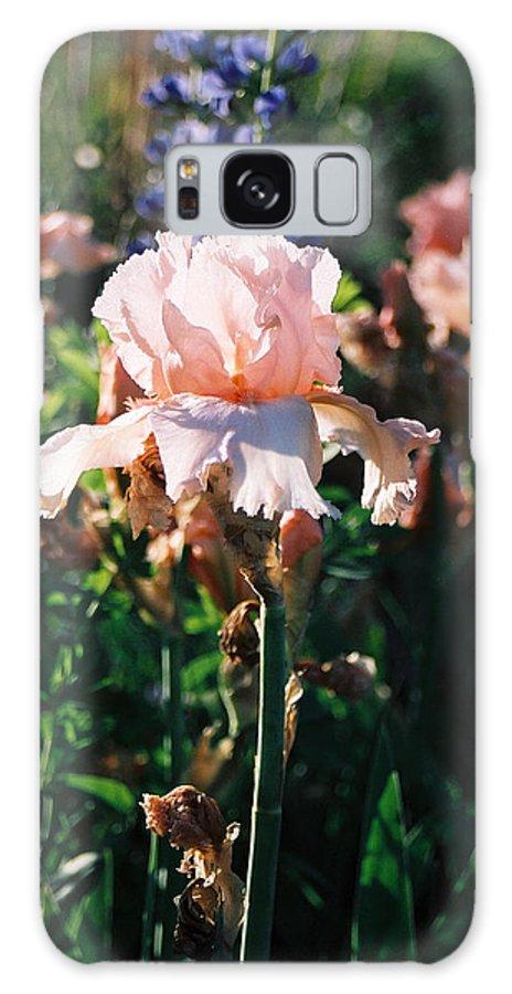 Flower Galaxy S8 Case featuring the photograph Peach Iris by Steve Karol