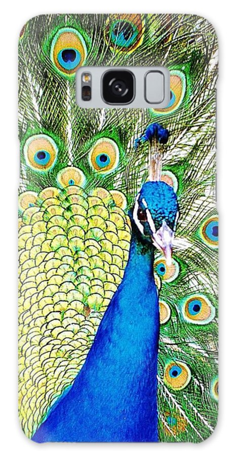 Peacock Galaxy S8 Case featuring the photograph Peacock by Daniel Thompson