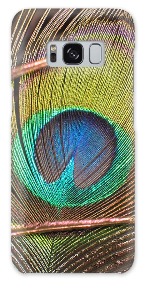Peacock Feather Galaxy S8 Case featuring the photograph Peacock Feather by Denise Keegan Frawley