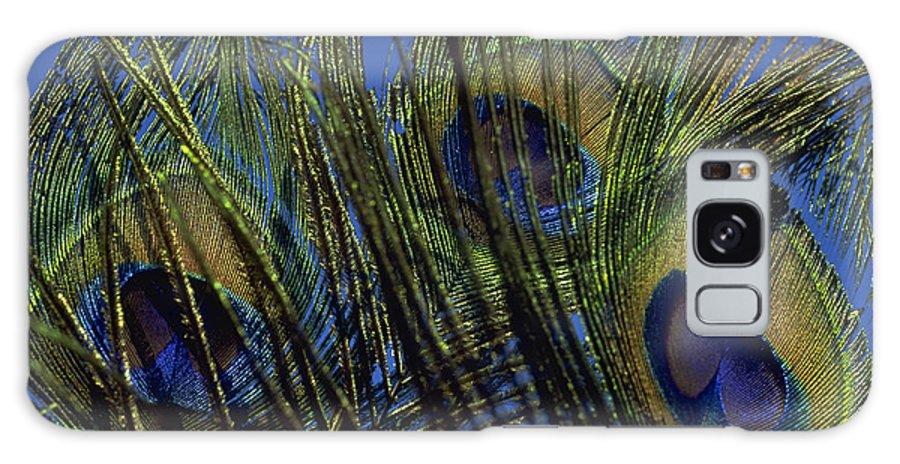 Feather Galaxy Case featuring the photograph Peacock Feathers by Michael Mogensen