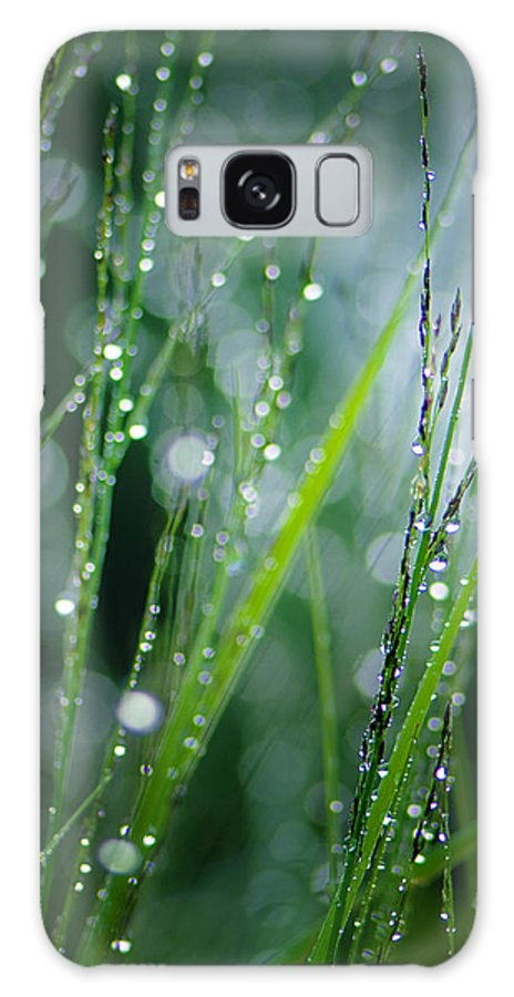 Dew Galaxy S8 Case featuring the photograph Pearls Of Dew by Silke Magino