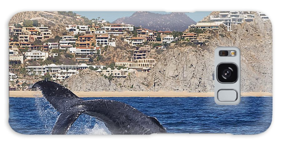 Frankie Grant Photography Galaxy S8 Case featuring the photograph Pedregal - Cabo San Lucas by Frankie Grant