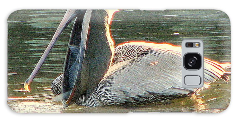 Pelican Galaxy S8 Case featuring the photograph Pelican Dinner by T Guy Spencer