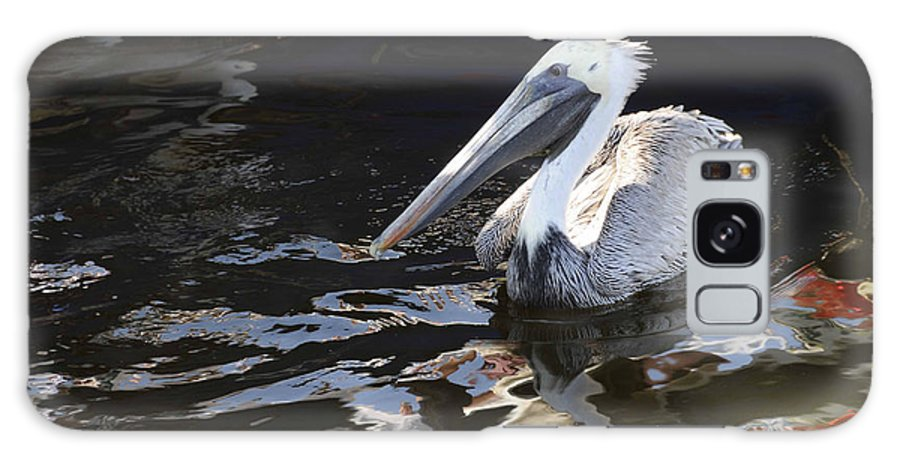 Pelican Galaxy S8 Case featuring the photograph Pelican by Jody Lovejoy