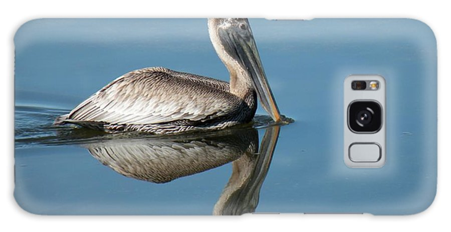 Bird Galaxy S8 Case featuring the photograph Pelican With Reflection by Rosalie Scanlon