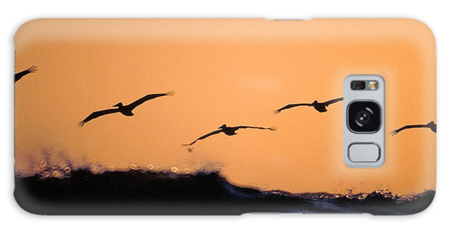 Pelicans Galaxy S8 Case featuring the photograph Pelicans Over The Pacific by Michael Mogensen