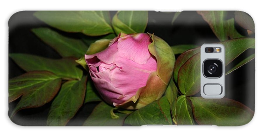 Flower Galaxy S8 Case featuring the pyrography Peony 1 by Robert Morin