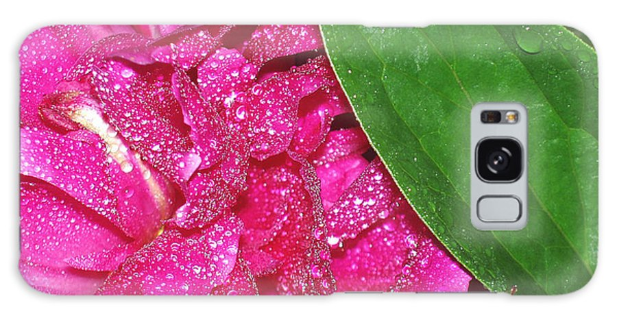Peony Galaxy Case featuring the photograph Peony And Leaf by Nancy Mueller