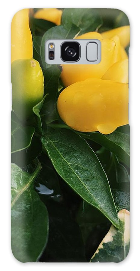 Galaxy S8 Case featuring the photograph Peppers by Jennifer Oakley