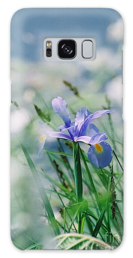 Periwinkle Galaxy S8 Case featuring the photograph Periwinkle Iris by Nadine Rippelmeyer