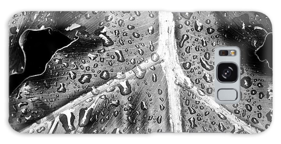 Botanical Galaxy S8 Case featuring the photograph Philodendron Rain - Bw by Scott Pellegrin