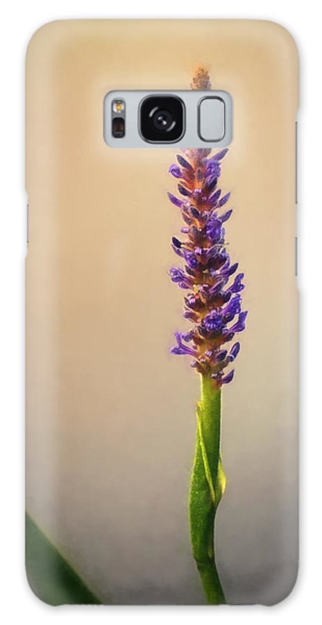 Pond Wildflower Painting Galaxy S8 Case featuring the photograph Pickerel Rush Pond Flower Painting by Martin Belan