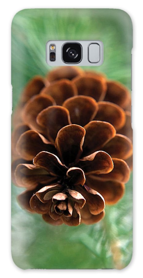 Nature Galaxy Case featuring the photograph Pinecone-4 by Steve Somerville