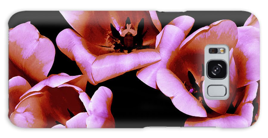 Tulip Galaxy S8 Case featuring the photograph Pink And Orange Tulips by Frances Hattier