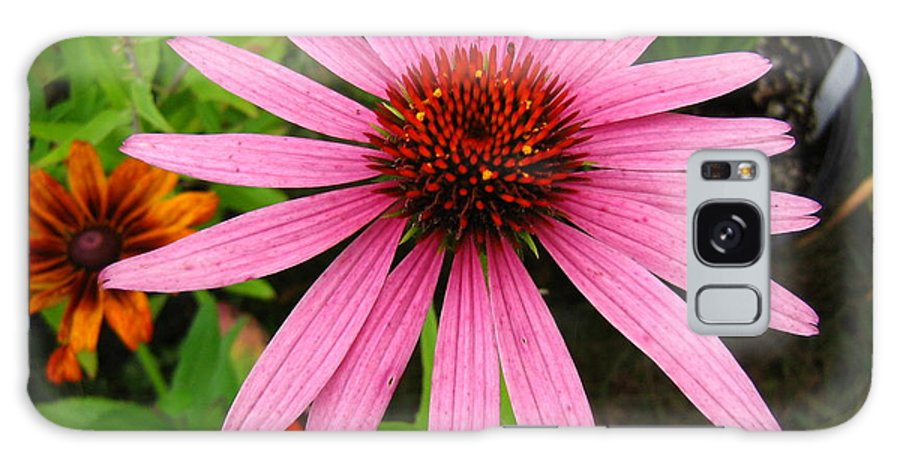 Flower Galaxy Case featuring the photograph Pink Beauty by Melissa Parks