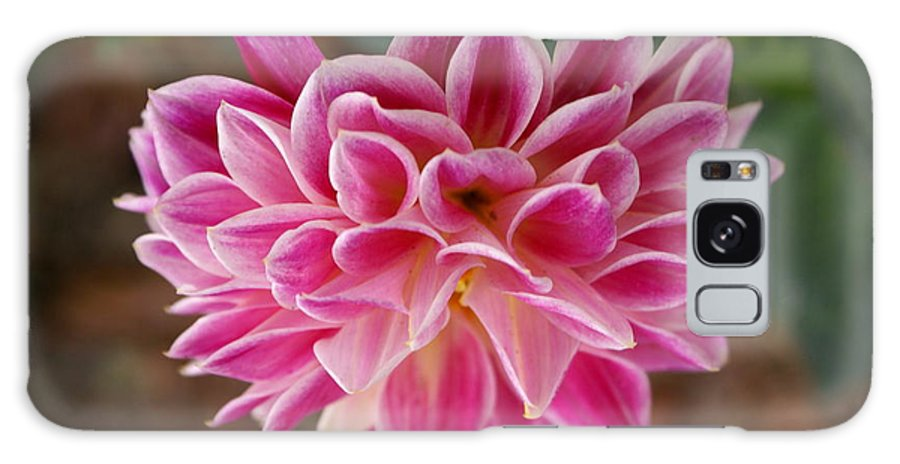 Pink Galaxy S8 Case featuring the photograph Pink Dahlia by Debbie May