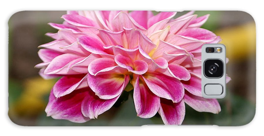 Pink Galaxy S8 Case featuring the photograph Pink Dahlia Power by Debbie May